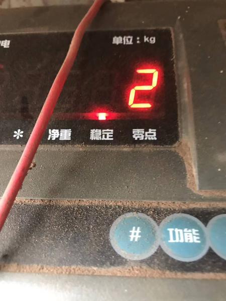 20190602 牧草-4.jpg