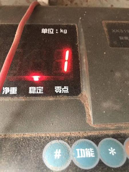 20190602 牧草-3.jpg